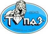 ЛДСКБ Топаз - логотип
