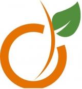 Абрикос мебель - логотип